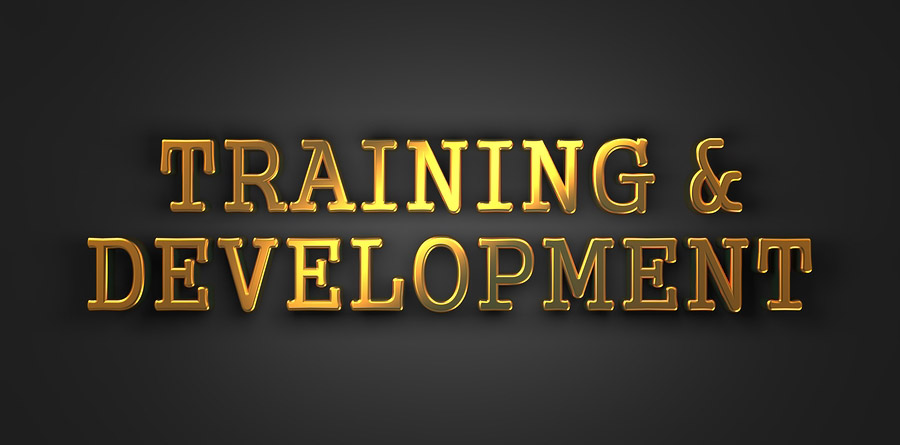 Customized Small Group Training